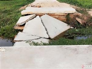 台风水毁农田机耕桥