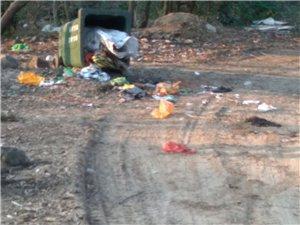 垃圾在路边没有人收,污染村里生活