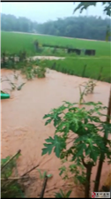 6月10号田心大暴雨