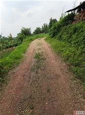修乡村公路。收了钱一两年呢。去年就中标了。到现在还没人来修。