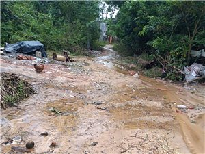 严重没有硬化路村庄,重点扶贫户村庄连硬化路没有,带来不方人民