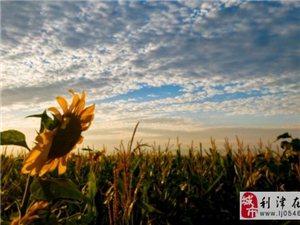 利津县北宋镇慢城,太火了,吃烤全羊,听蒙古歌,献哈达