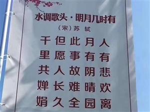 儋州文旅宣传的苏东坡广告竟然有错别字。