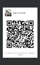 新县人在北京微信群