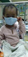 社会爱心人士伸出援助之手帮助这个聪明可爱却又饱受病魔折么的孩子吧!