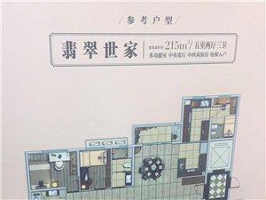 立体园林电梯入户南北双阳台精装交付全明户型