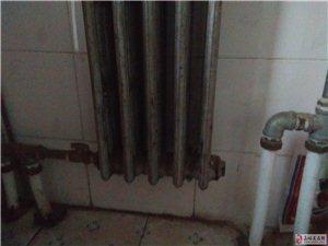 谁能告诉我,这暖气片进水和出水都安装两个管子,是啥意思?哪位大师能指点一下。