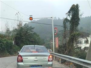 蒙子坳红绿灯设置是否合理?