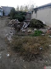 美丽的草原我的家,