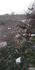 为啥污水改造要把土倒入村西河道里