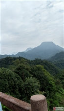 《登青城后山》