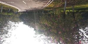 丰都县保合月湖湾
