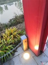"""中山河边的""""长明灯"""",没人管?减少浪费,节约资源是每个公民的责任!"""