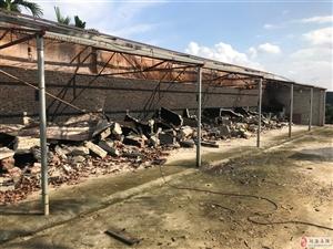 槟榔加工户自行拆除烟熏灶