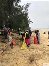 赞美金海湾就直接加了五千�f海滩环境的保护者