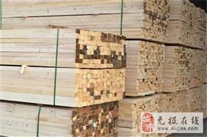 亳州批发木材信息