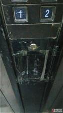 大众小区楼道及电梯管理太差,希望物业政府能重视整治下。