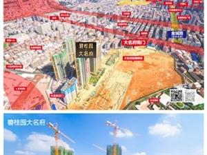 碧桂园大名府新春特惠一口价回馈客户,黄金热线:13126069353