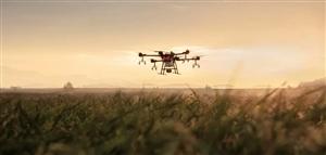一年一度的小麦除草剂作业又该开始了,用无人机打药请认准登顶无人机植保。欢迎村里个人组织统一打药,给予