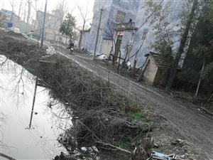 看看高塘乡唯一的大路,临泉县高塘乡贾王行政村宋小庄