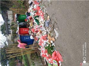 网友求助:共和五队垃圾堆成山了,希望能来清理一下