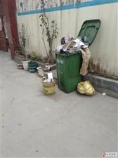 自从门口放置了垃圾桶,就是噩梦!这个问题该向哪个部门反应。