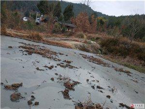 土地用途变质,农民生存环境堪忧。