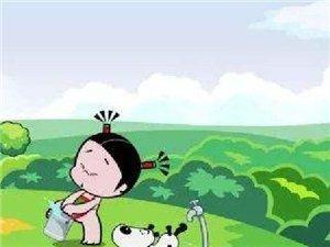 《种一棵小树,绿一方净土》