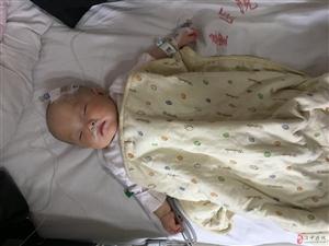 七个月女儿心脏扩大随时心力衰竭