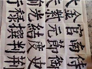 河北涞水净空书法作品文集欣赏