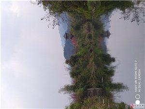 湄潭,就在身边,其实也很美!