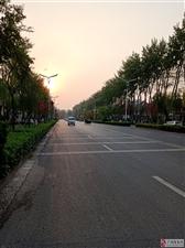 夕阳下的花苑路