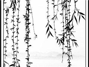 三峡坝区的晨雾