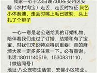 尋(xun)狗啟(qi)示(提供重要線索必(bi)有(you)重謝)
