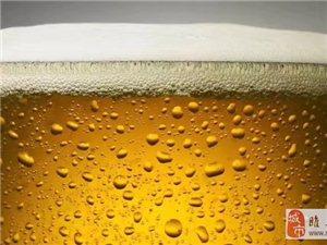 啤一夏精酿鲜啤