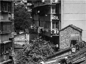 《高楼下的棚户房》