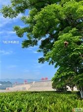 今日三峡(飞虹手机路过)