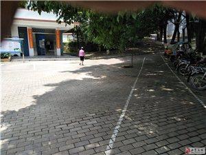 寻乌县第二中学冬青楼收书纸现场
