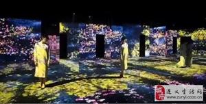 国际光影艺术展遵义站6月15日星力城C馆开幕