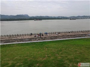 夏日多雨天空晴,一路滨江是风景。