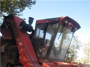 福格森玉米收割机出售