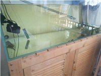 鱼缸为超白玻璃,1200×500×500(mm),玻璃厚12mm,虹吸过滤(下虑),过滤超级强大,下...
