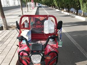九成新上海永久牌三轮车,没用多少回,刚买不久,先急售