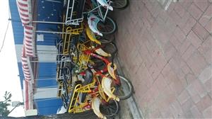 西广场自行车出兑,因本人有事去外地,接手即可盈利,有意者电话联系,18643000617。