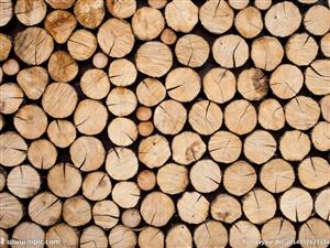 【长期收购】旧柁旧檩旧木头(各种干湿木头) 联系方式:13612071061   微信同步