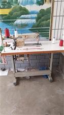 本人有电动缝纫机一台,节能电机诚心出售!有意者请联系18332036279