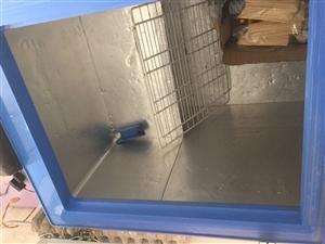 本人有不锈钢冰柜1.5*0.8,白色上翻双门冰柜1.8*0.7各一个,冷冻效果好,可控温,