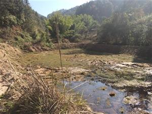 本人在龙源坝寨下乡有二十亩左右空置场地,属正式工业用地。原是矿区加工场,有四季长流水、电(高压线已拉...