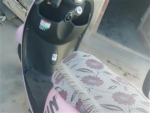 本人有一辆绿能电动车出售,买回来只骑了3个月,因工作原因造成本人骑电动车上班实属不便,现今电动车一直...