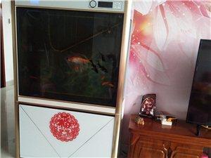 买了两年的大鱼缸不想用了,买时2300现卖500元,有想要的联系